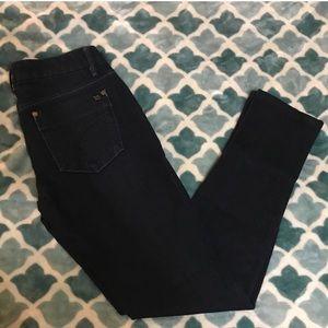 Joe's Jeans Chelsea Skinny Jeans, Size 26